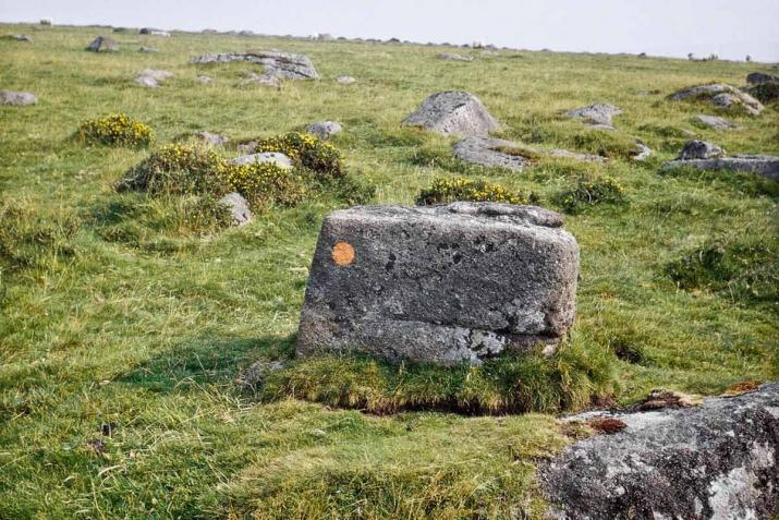 A series of twenty photographs captured along the high moor of Dartmoor National Park in Britain. Each photograph featuring an orange mark painted onto each stone marker.