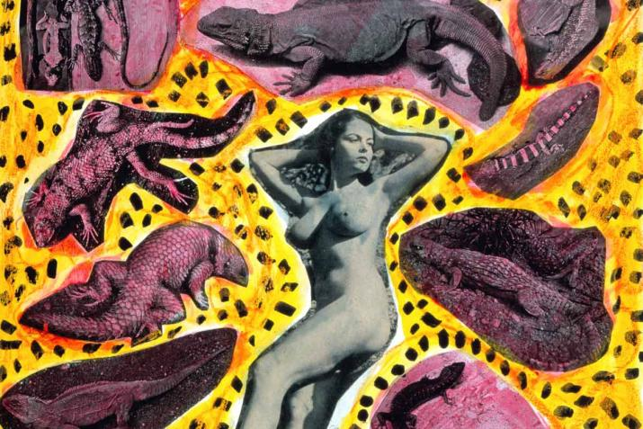a nude woman surrounded by collaged dinosaurs and a yellow background