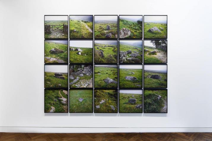 a grid of framed images featuring green landscapes hanging on a wall