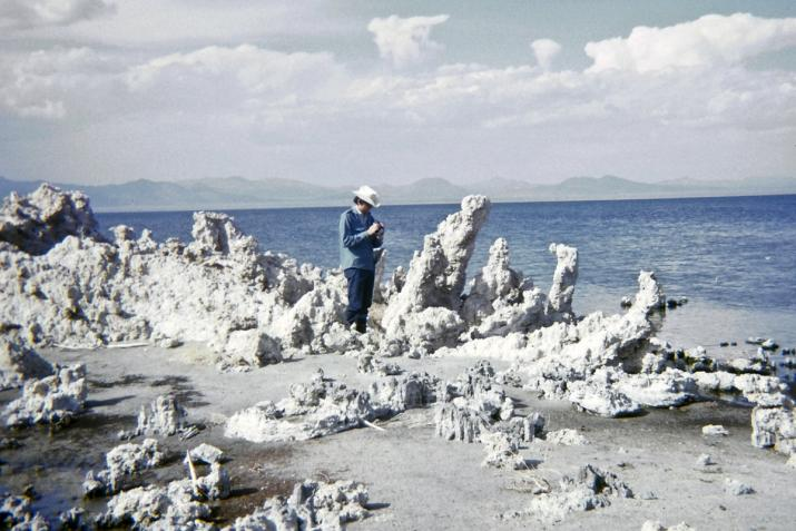 a figure standing at the edge of a lake with large salt encrusted formations along the shore