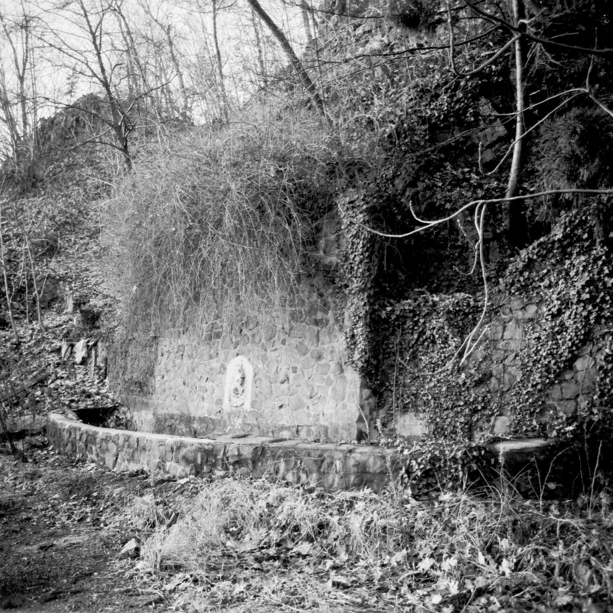 Black and white photograph of building ruins in a forest in Cedar Grove, New Jersey