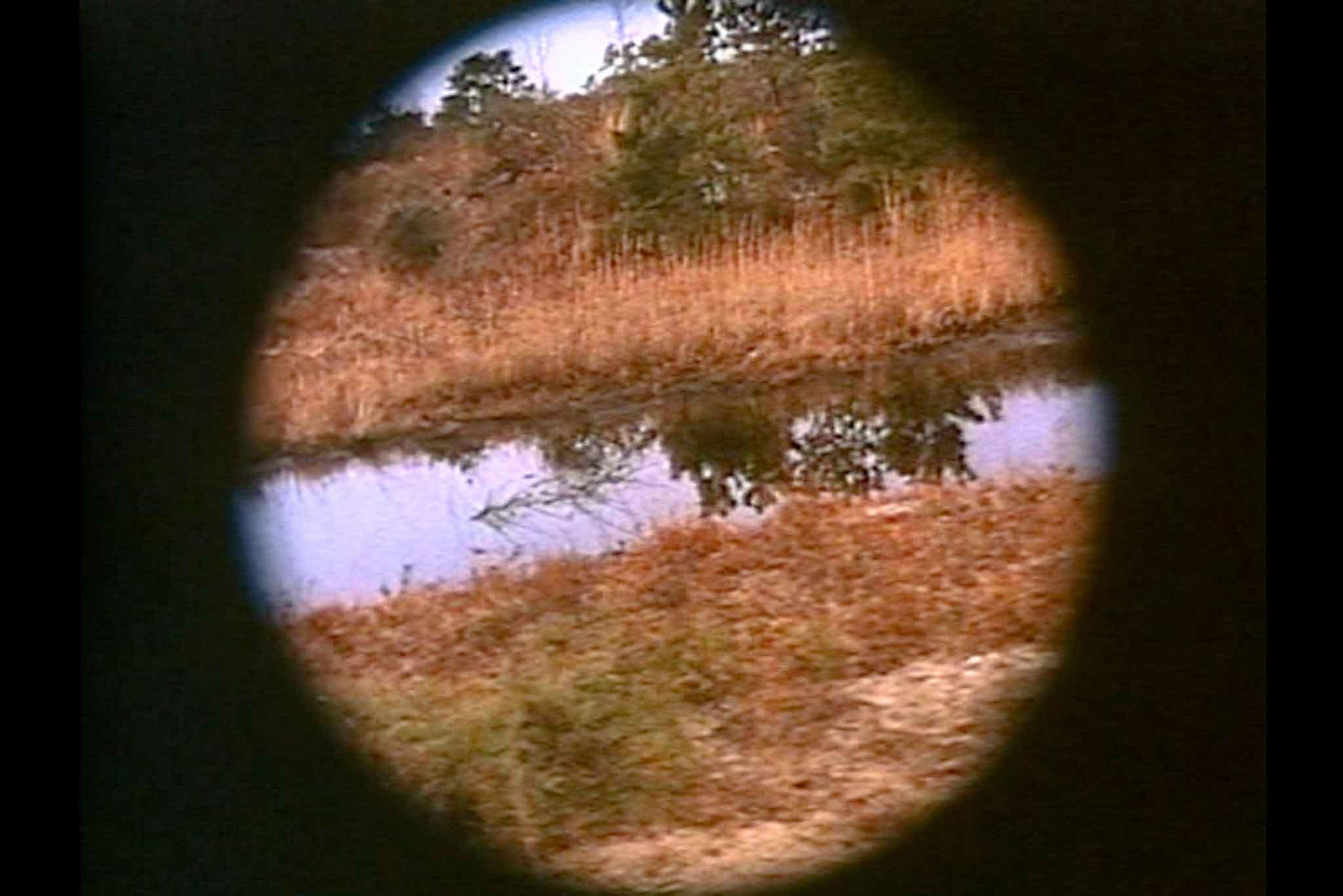 A still image from the film Pine Barrens