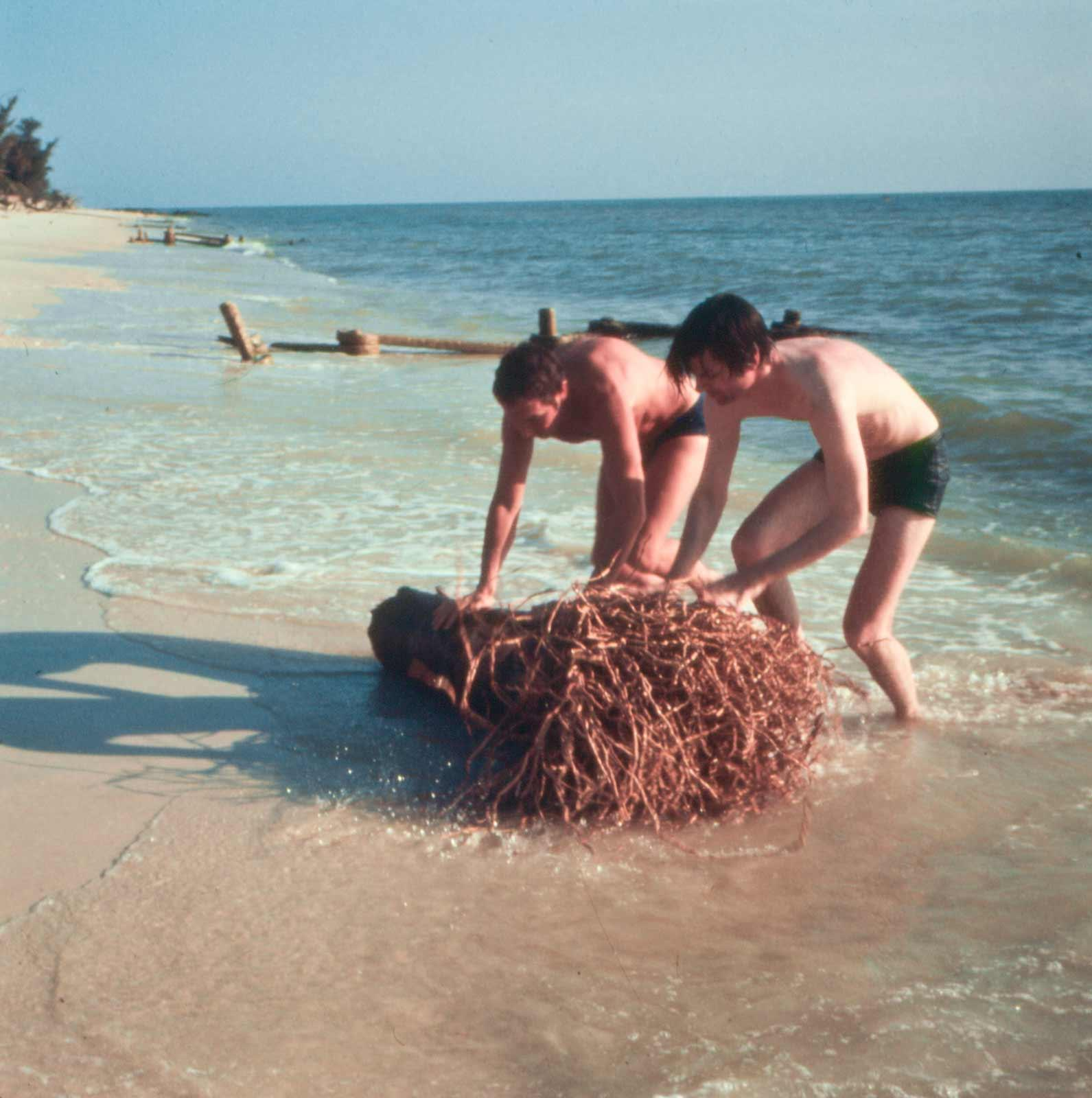 Two men in swimsuits leaned over pushing a tree stump on a sandy beach.